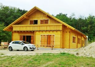 Hiša iz lesa