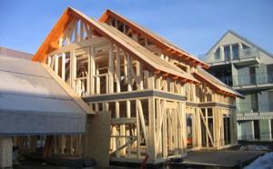 Skeletna gradnja hiše